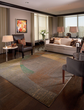 Jabro Carpet One Floor Home In